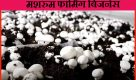 Mushroom Farming Business in Hindi