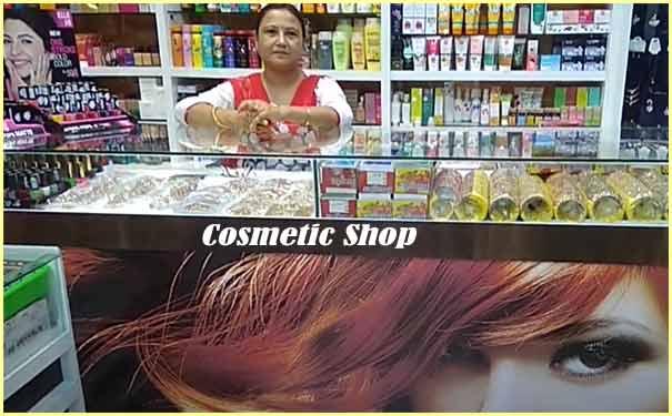 Cosmetic Shop business plan hindi