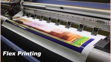 Flex Printing Business Plan in Hindi