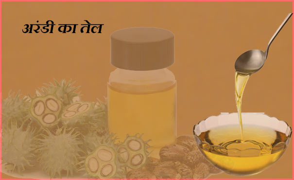 Castor Oil Manufacturing Business hindi