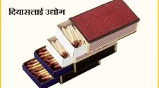 Match Box Manufacturing Business in Hindi