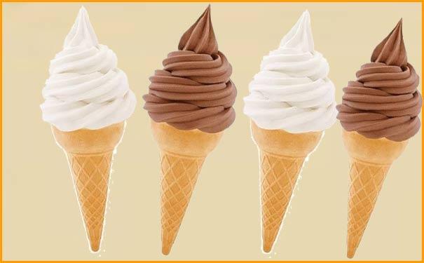 Softy ice cream making business plan hindi