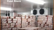 cold storage business plan hindi