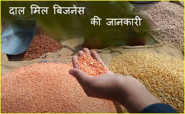 Dal mill Business plan in hindi