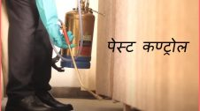 pest control business plan in hindi